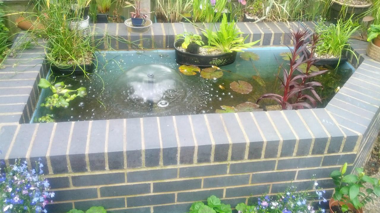 raised-ornamental-pond